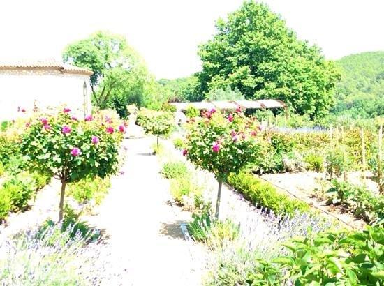 Chateau de Berne: chef's garden
