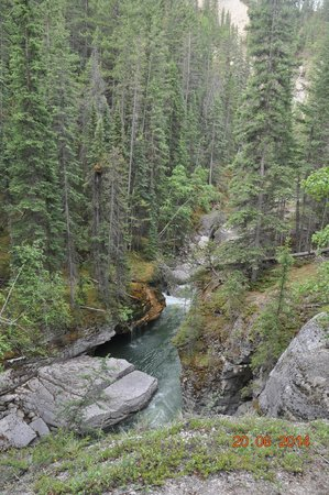 Maligne Canyon : View from Bridge #4, not much of the canyon left from here.