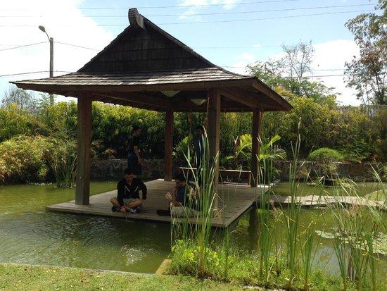 El Museo Castillo Serralles : Japanese Garden