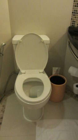 ibis Samui Bophut: Toilet