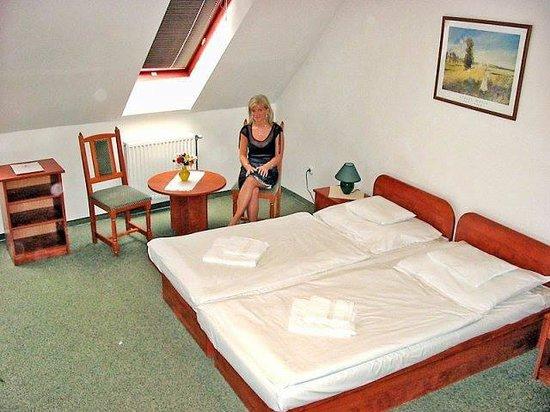 Hotel Talizman: Double Room