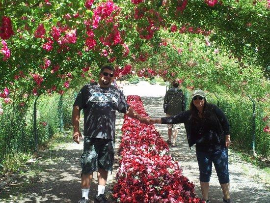 Point Defiance Park : Surrounding Gardens