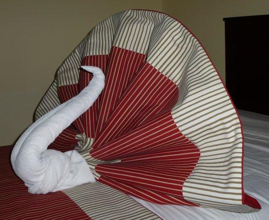 Magic Tulip Beach Resort: Handtuch-Skulptur