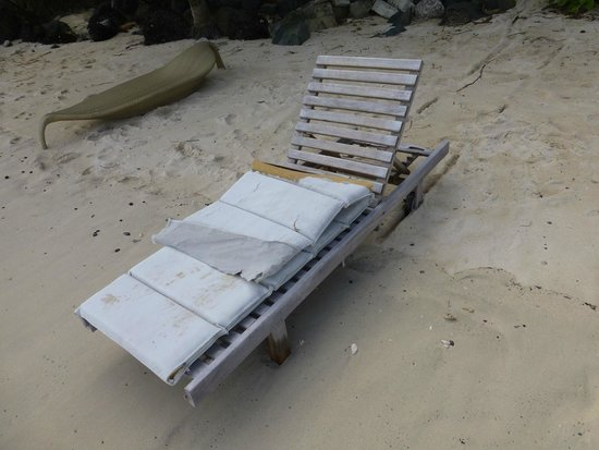 """Little Polynesian Resort: One of the battered filthy """"loungers"""""""