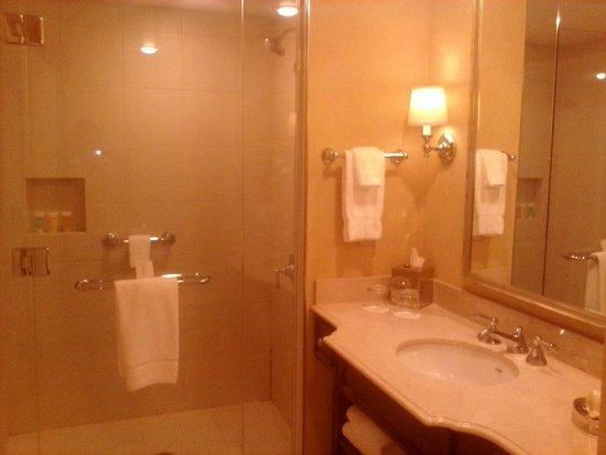 Morris Inn: bathroom huge shower