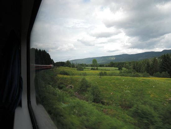 The Bergen Railway: View