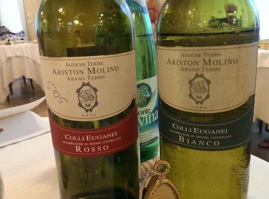 """Hotel Ariston Molino Terme: les vins des """"Colli"""" sont excellents"""