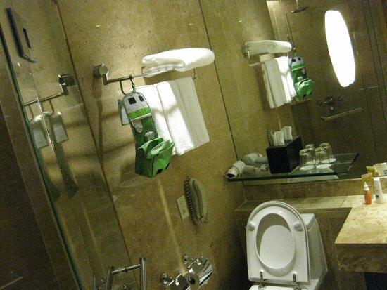 Holiday Inn Bangkok: Shower room
