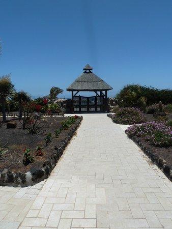 Hotel Elba Carlota : Beautiful garden area to beach
