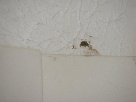 Super 8 East Hazel Crest: CRACKED CEILING IN OUR BATHROOM
