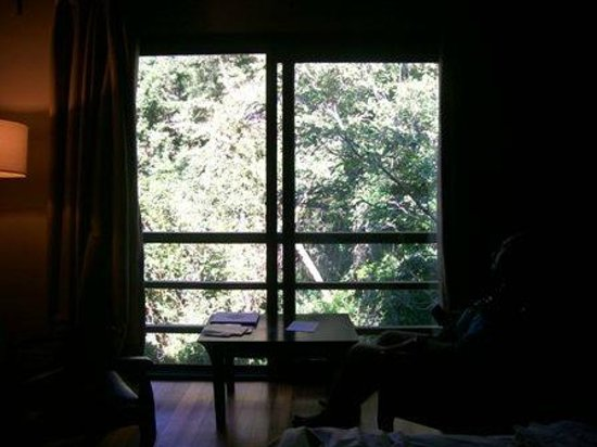 Loi Suites Iguazu: vista al bosque