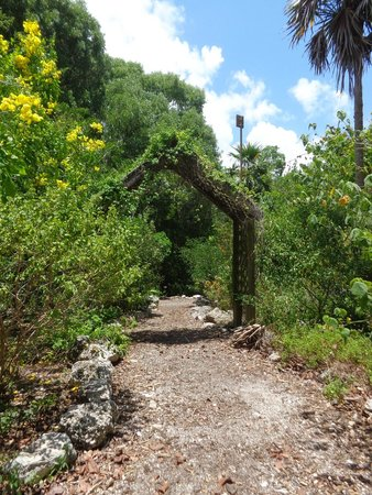Key West Tropical Forest And Botanical Garden: A Pretty Pathway