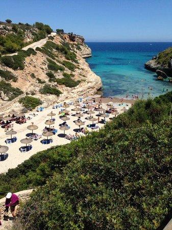 Complejo Calas de Mallorca : One of the beaches