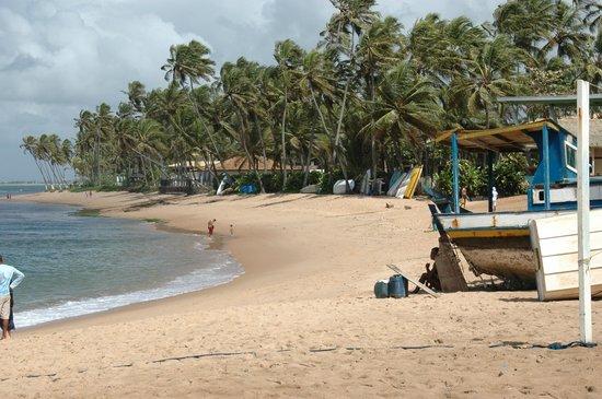 Forte Beach : Praia do Forte