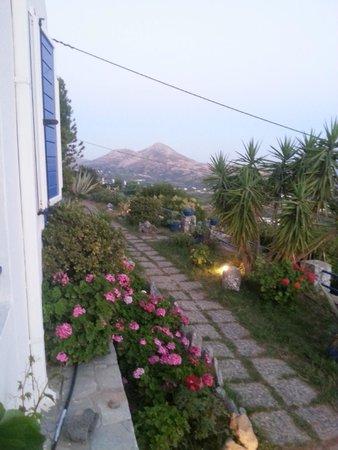 """Villa Stella : die """"linke"""" Aussicht vom Balkon"""