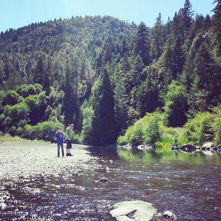 Redwoods River Resort & Campground: Redwoods River Resort