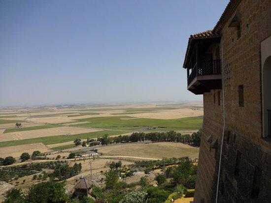 Parador de Carmona Restaurant: Vistas desde la terraza