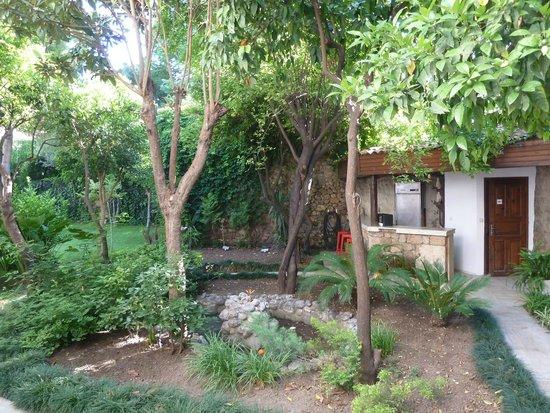 Ninova Boutique Hotel : Garden