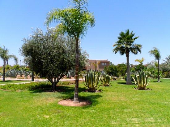 Hotel Riu Tikida Palmeraie : jardins