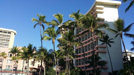 Waikiki Beach: What a sky - and those palm trees!!