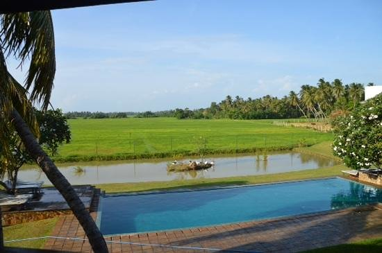 Kithala Resort: view from room 225