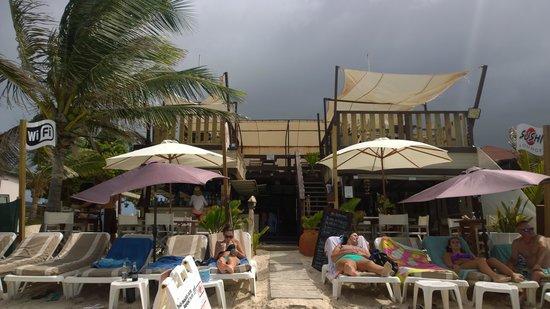 The Sun Beach Clubber : Sun Beach Clubber