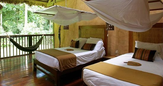 Posada Amazonas: and yesss you're at the Rainforest!!