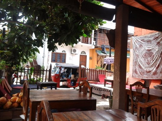 Pink Elephant Hotel and Restaurant : on the terrace