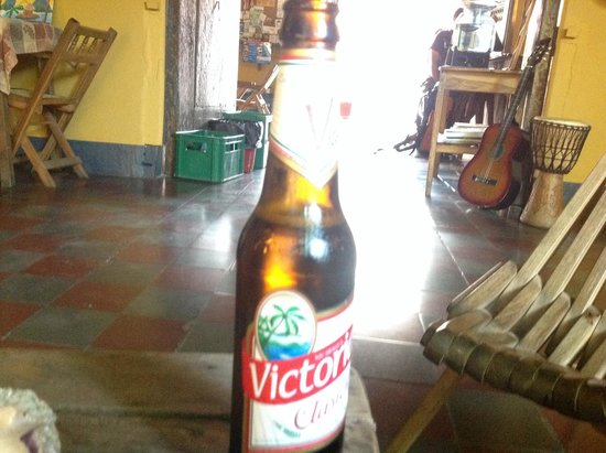Hostal La Tortuga Booluda: Beer from our self-service bar