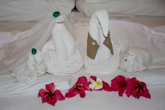 DoubleTree by Hilton Resort Zanzibar - Nungwi: Surprise in our room after the event. These were dressed the same way we were