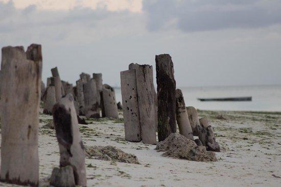 DoubleTree by Hilton Resort Zanzibar - Nungwi: Some Pictures