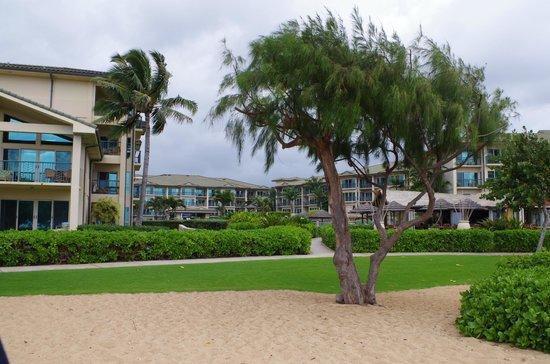 Waipouli Beach Resort: view from the beach