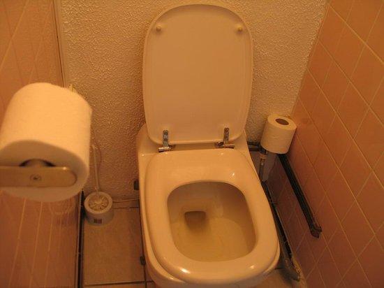 Hotel Saint George : Avignon, Hôtel Saint George - toilet