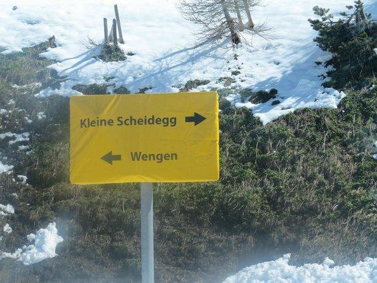 Jungfraujoch: sign posts