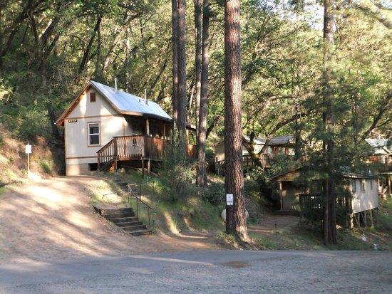Yosemite Bug Rustic Mountain Resort : Alle Hütten liegen idyllisch am Berghang mitten im Wald