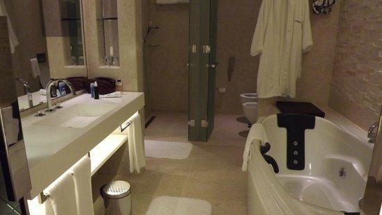 Le Meridien Dubai Hotel & Conference Centre: télé incluse dans la glace de la sdb