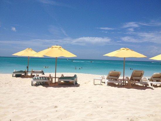 Alexandra Resort: Beach Area
