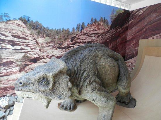 Museo Geologico delle Dolomiti