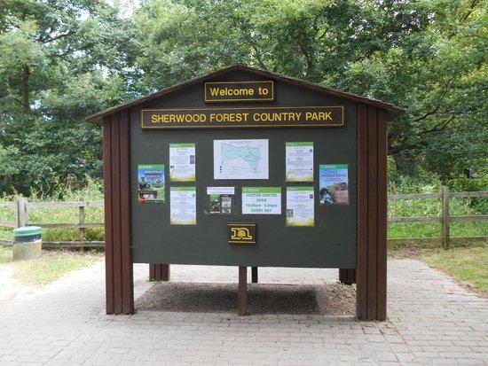 Sherwood Forest: sherwood