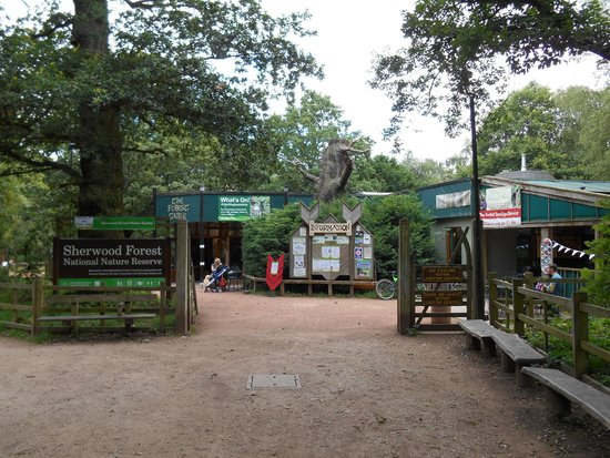 Sherwood Forest: sherwood6
