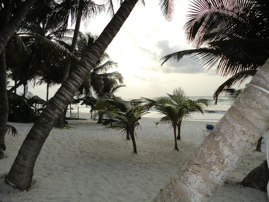 Cabanas Tulum : Beach view
