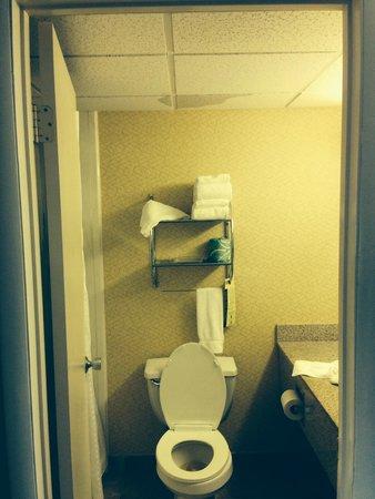 Best Western Plus Philadelphia Bensalem Hotel: Dripped right on the clean towels