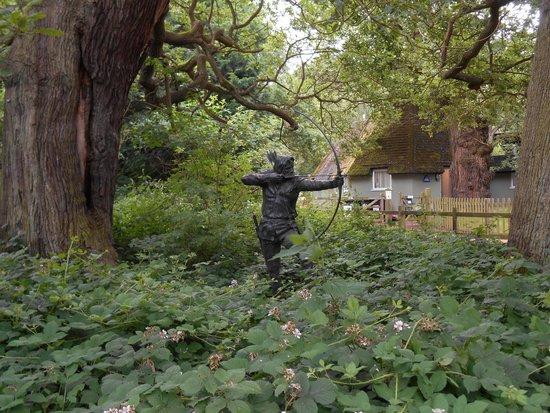 Sherwood Forest: sherwood3
