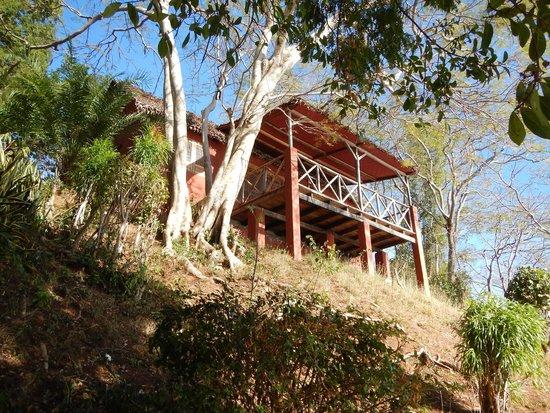 Ankify Lodge: Bungalow