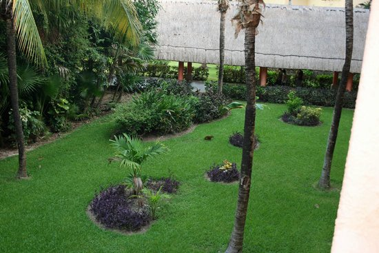 Barcelo Maya Tropical: View from 7546