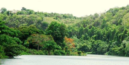SeavisTours : Tanama Riverday