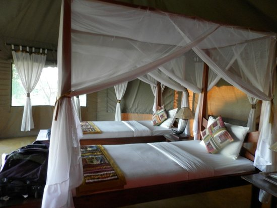 Serengeti Simba Lodge : Very spacious modern tented rooms