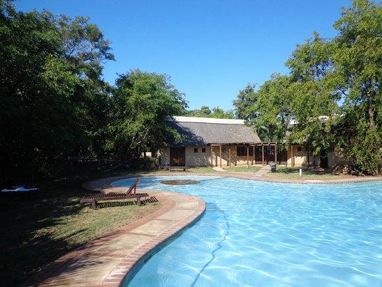 Skukuza Rest Camp : Zwembad Skukuza