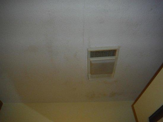 Ramada Groton: Moldy ceiling!!
