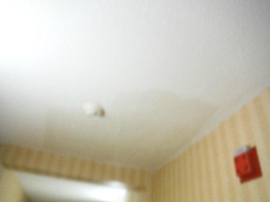 Ramada Groton: Gross ceiling!